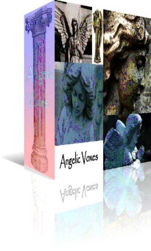 Product picture Angelic Voxes.zip